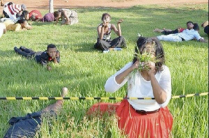 Believers eat grass. Photo court. African Spotlight